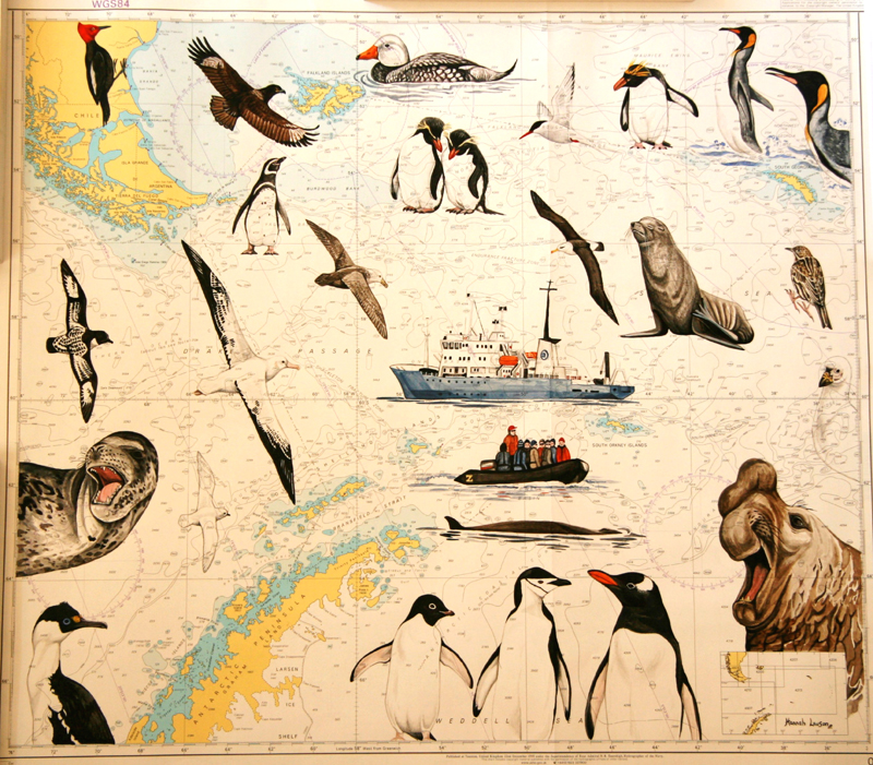 Badger's Sea Chart